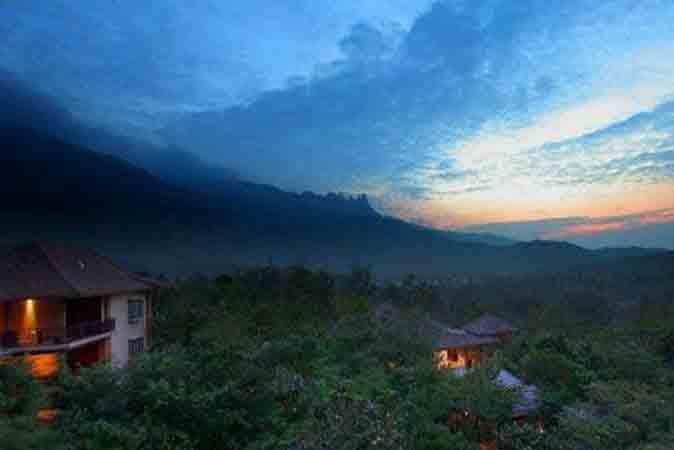 那香山配套-热带雨林图片